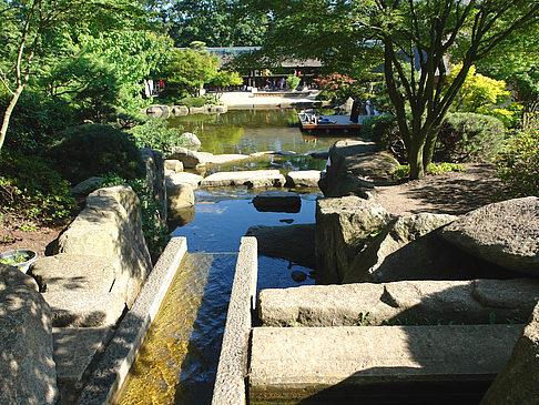 Japanischer Garten Foto Von Hamburg In Fotogalerie Planten Un
