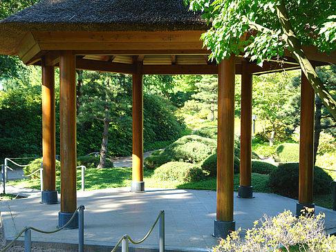 Japanischer Garten Fotos Hamburg Mit Bildergalerie Planten Un